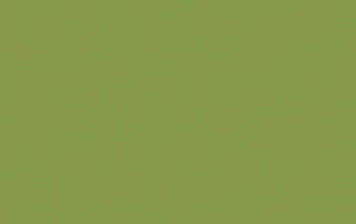 kiwi-zelena-u626-st9-