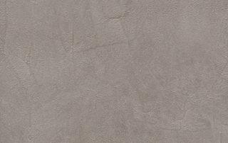 jalovec-šedý-f651-st16-2
